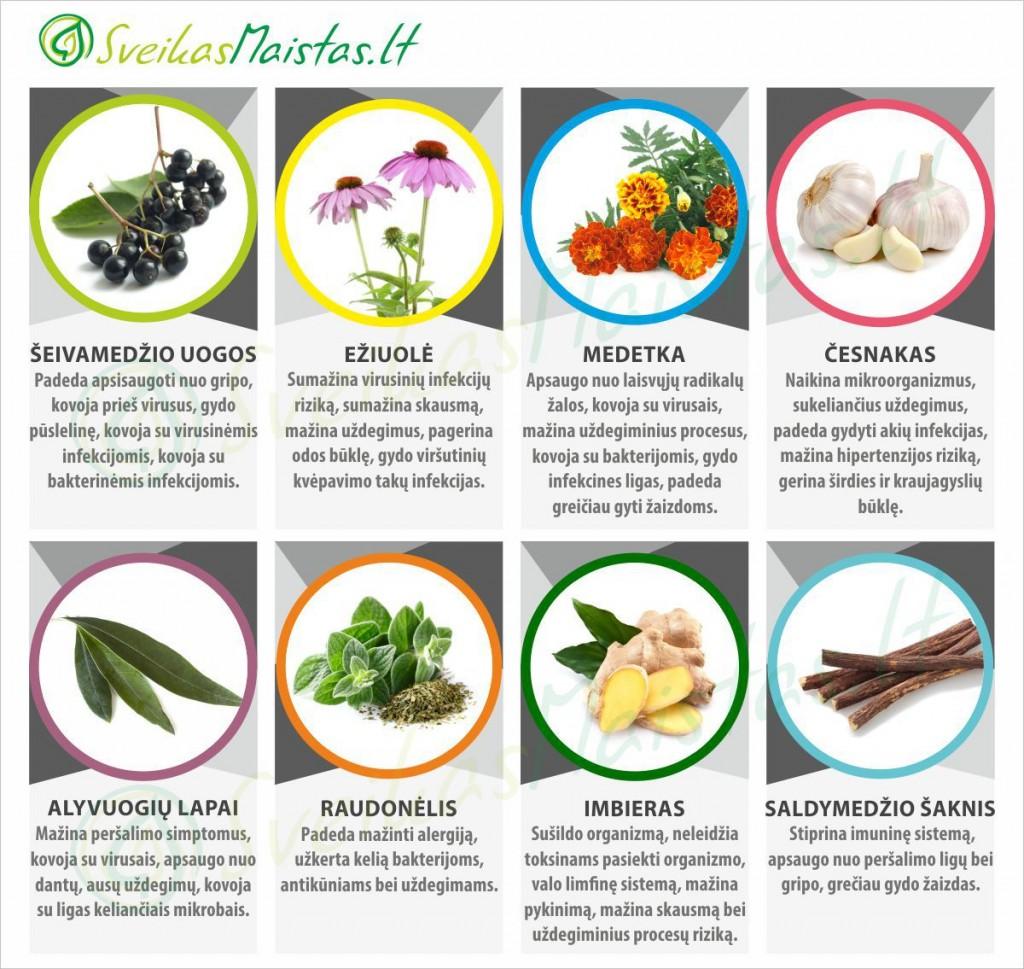 sveikas-maistas-antivirusines-zoleles-kaloriju-skaiciuokle